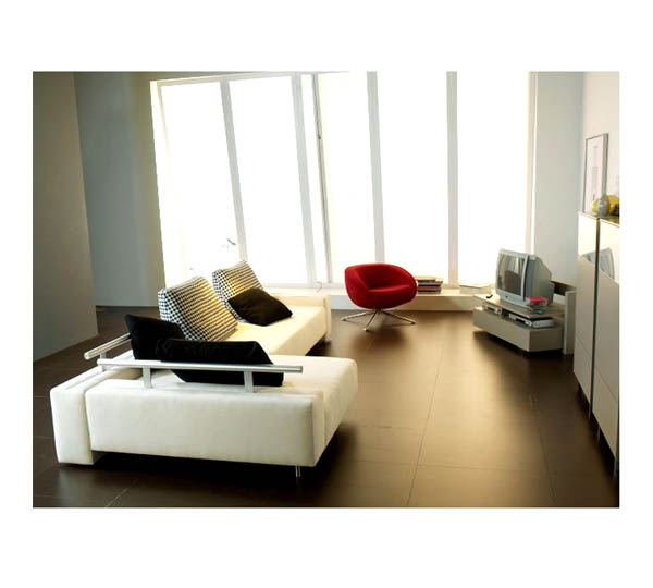 Canap s fauteuils de salons tapis seloma amenagement for Amenagement salon avec 2 canapes